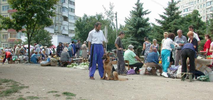 Человек с собакой на улице
