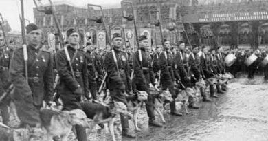 Собаки Великой Отечественной