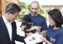 Зоозащитники убивали сотни собак ради пожертвований
