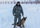 Полицейская собака догнала и спасла вора