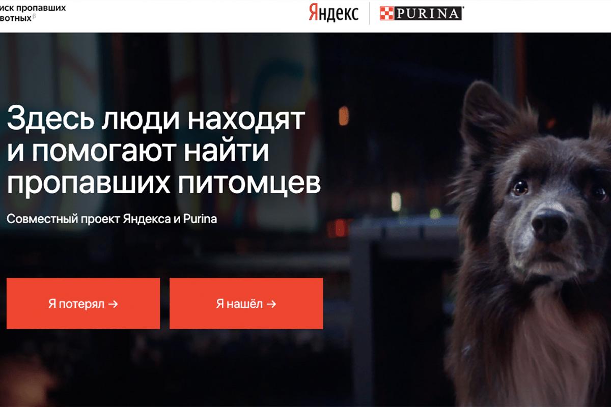 поиск животных сервис Яндекса