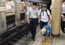 Токио к Олимпиаде не готов