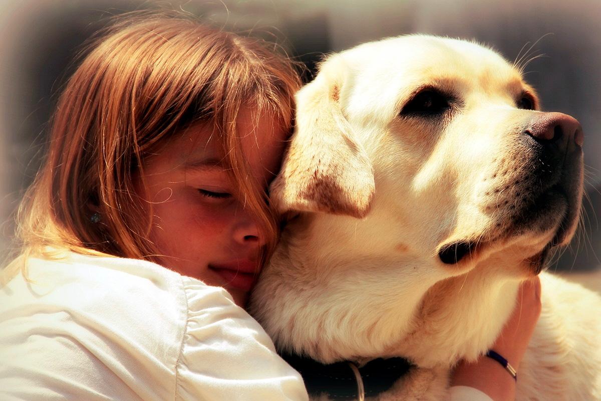 Стресс собаки зависит от стресса хозяина