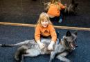 Правительство запретило содержать волков