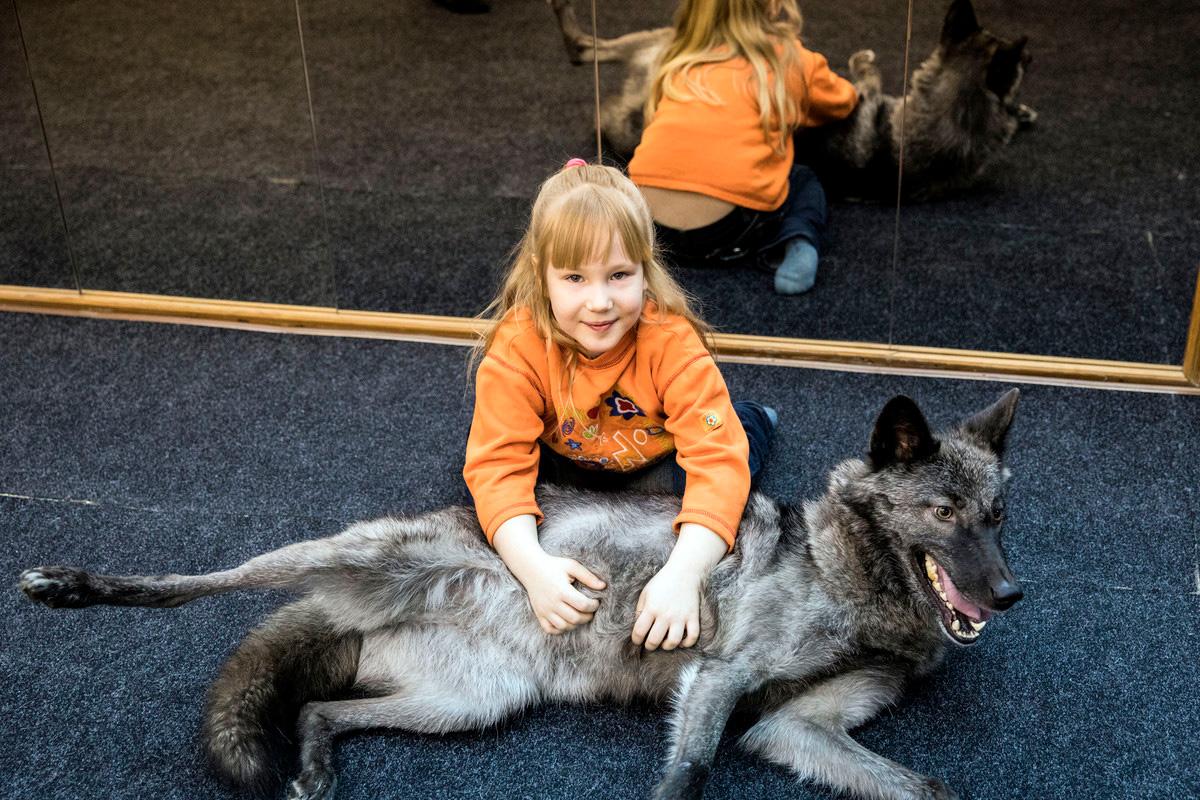 Волк вне закона