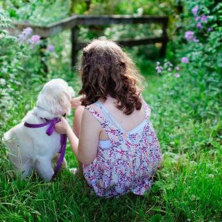 Шизофрения: собака как профилактика
