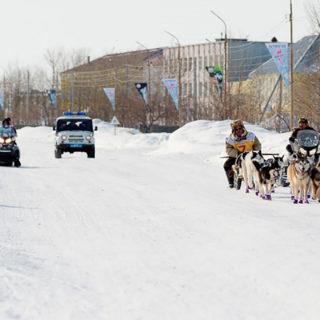 Берингия прибыла в Белореченск