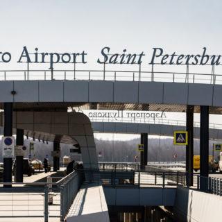 собака в аэропорту Пулково