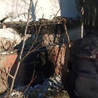 сгоревший приют для бродячих собак
