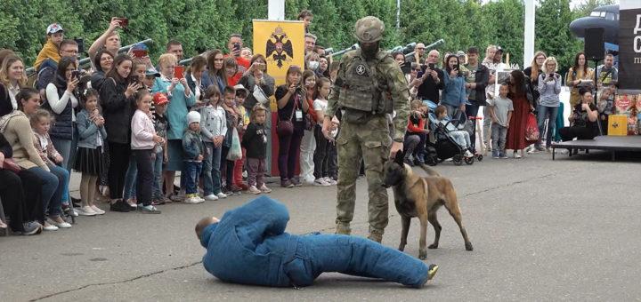 служебные собаки Росгвардии