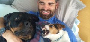 Собака ревнует к другой собаке