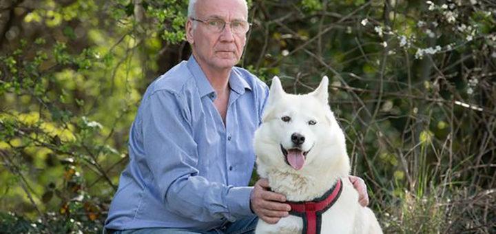 собака спасла ребенка
