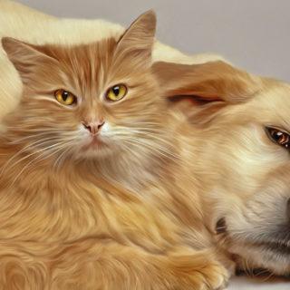 домашние животные: кашка и собака