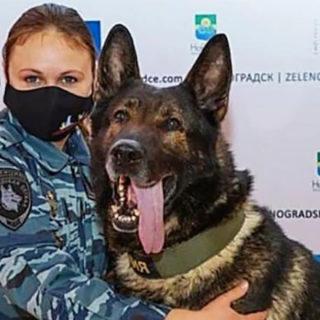 Мария Копцева и служебная собака Волк-Меркурий и